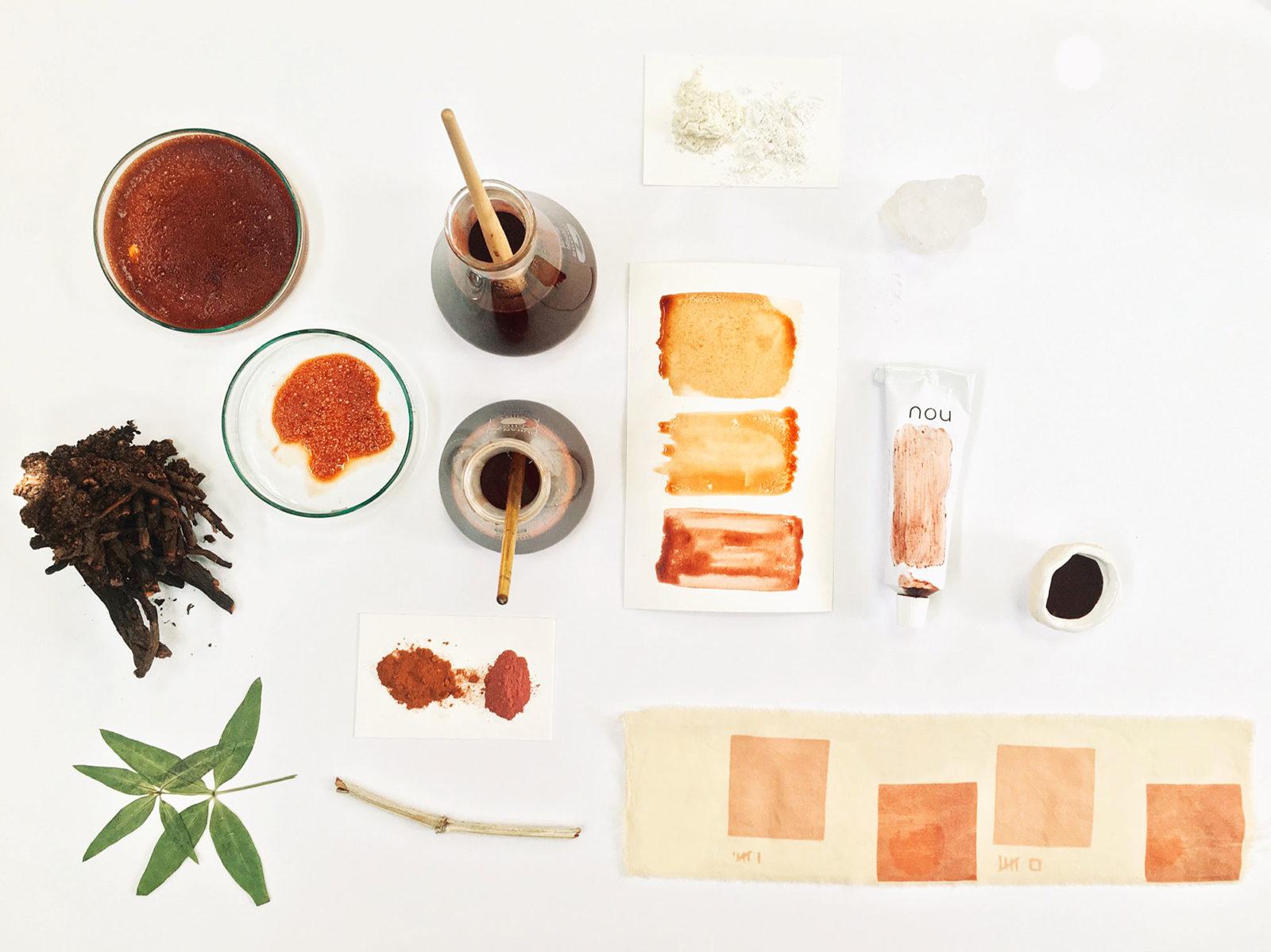 Farbstoffe, Musterstreifen und Proben mit Pflanzenfarben von Nou